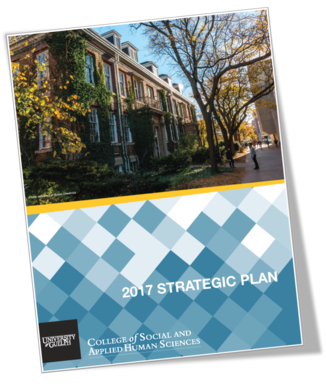 Download the 2017 Strategic Plan
