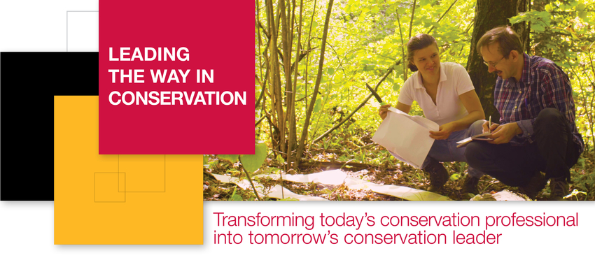 Leading the way in conservation