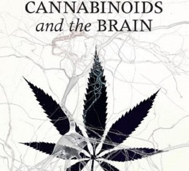 Cannabinoids and the brain, book cover with neurons and marijuana leaf.
